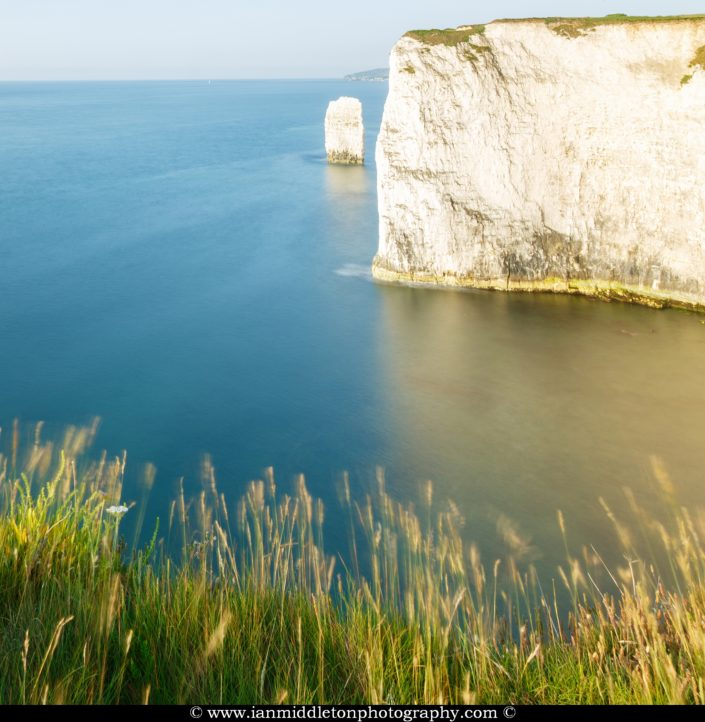 Soft morning light at Old Harry Rocks, at Handfast Point on the Isle of Purbeck, Jurassic Coast, Dorset, England. A UNESCO World Heritage Site