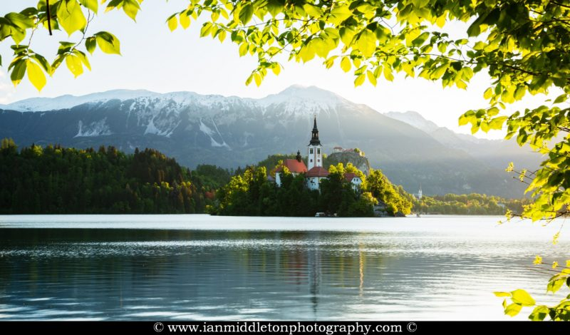 View across Lake Bled to the island church, clifftop castle and Mount Stol in all it's spring glory, Slovenia.