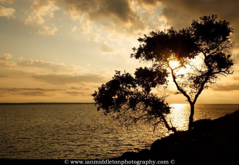 Sunrise over the rocky coastal area of Cunski and Osiri Beach. Cunski lies just 8kms north of Mali Losinj on Losinj Island, Croatia.