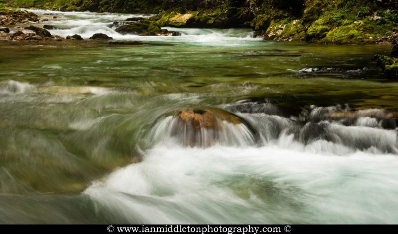 Blejski Vintgar gorge, Gorje, near Bled, Slovenia. The 1.6 km long Vintgar gorge has been carved through the vertical rocks of the Hom and Bort hills by the Radovna River.