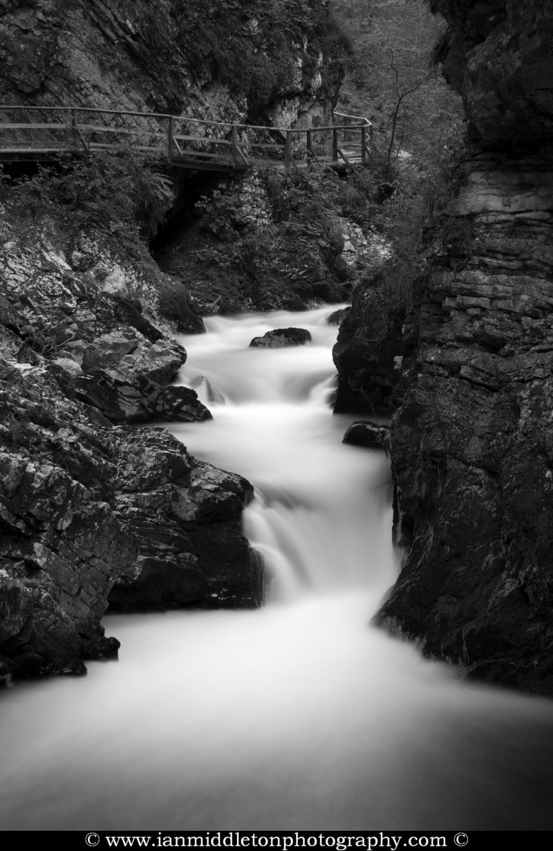 Black and white photo of the Soteska Vintgar gorge, Gorje, near Bled, Slovenia. The 1.6 km long Vintgar gorge carves its way through the vertical rocks of the Hom and Bort hills by the Radovna River.