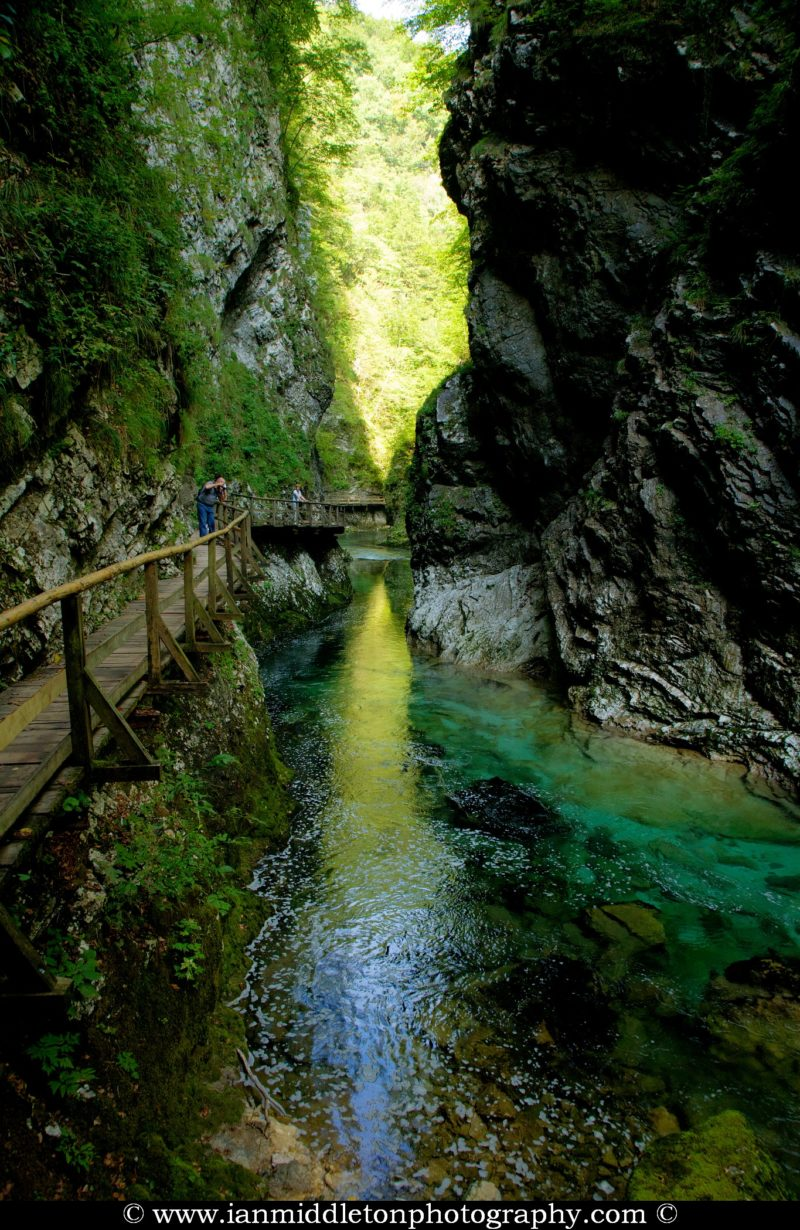 The Vintgar gorge, Gorje, near Bled, Slovenia. . The 1.6 km long Vintgar gorge carves its way through the vertical rocks of the Hom and Bort hills by the Radovna River.