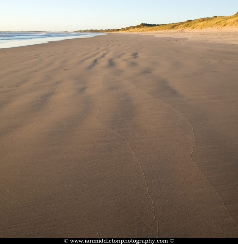 Ballynaclash beach at dawn, Blackwater, County Wexford, Ireland.Ballynaclash beach at dawn, Blackwater, County Wexford, Ireland.
