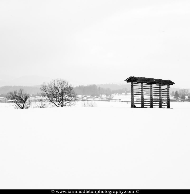 Snow covered landscape in Gorenjska, in the north of Slovenia. To the right is a Kozolec, a wooden rack for drying hay.