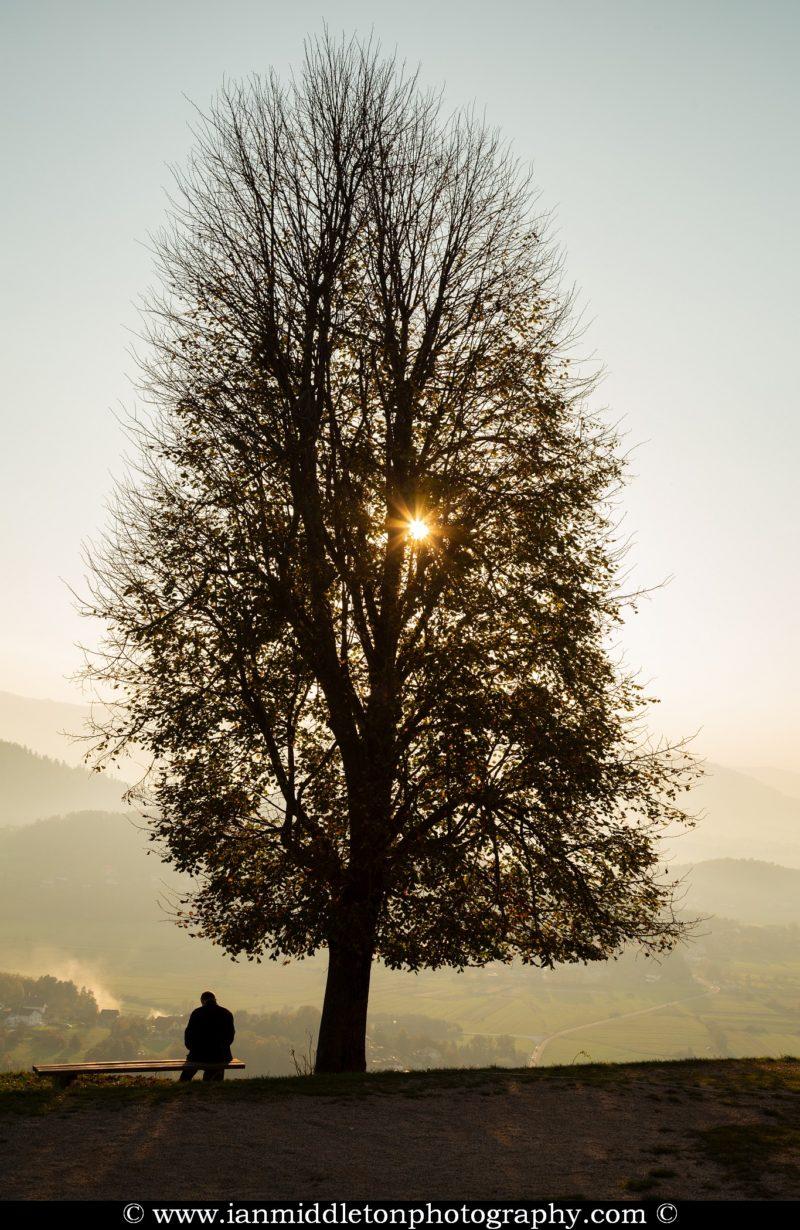 Man sitting on bench beside tree as sun goes down behind it on Sveta Ana hill, an exposed hill overlooking the Ljubljansko Barje (Ljubljana marsh) near the village of Preserje.