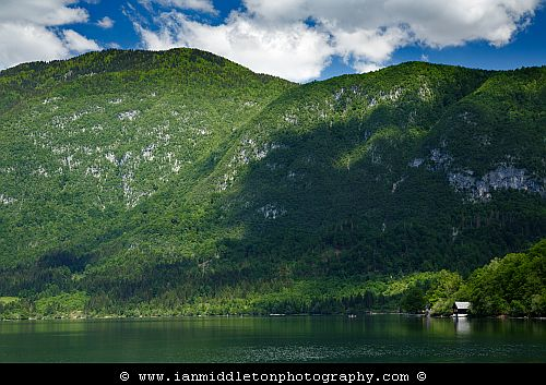 Spring morning at Lake Bohinj, Triglav National Park, Slovenia