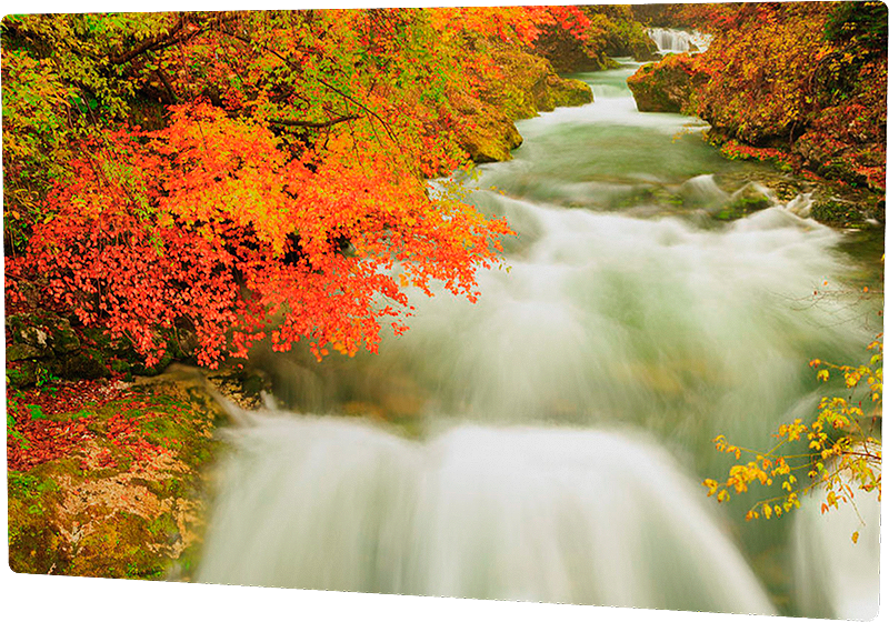 Vintgar gorge in autumn - metal photo print example