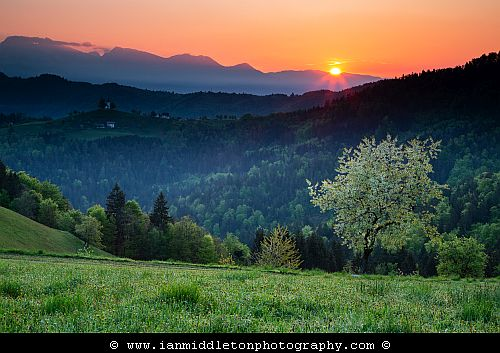 Springtime view at sunrise from Rantovše hill across to Sveti Tomaz nad Praprotnim (church of Saint Thomas) and the Kamnik Alps, Slovenia.