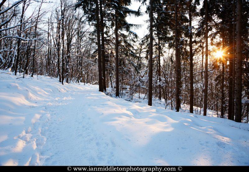 Winter trail to the hill of Sveta Ana Church on the Ljubljana Moors (Ljubljansko Barje), a large area of wetland 160 square kilometres in size.
