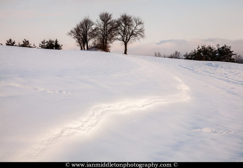 Snow covered hill near Volavlje in the Jance hills to the east of Ljubljana, Slovenia.