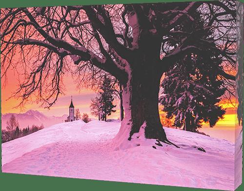 Winter canvas print example