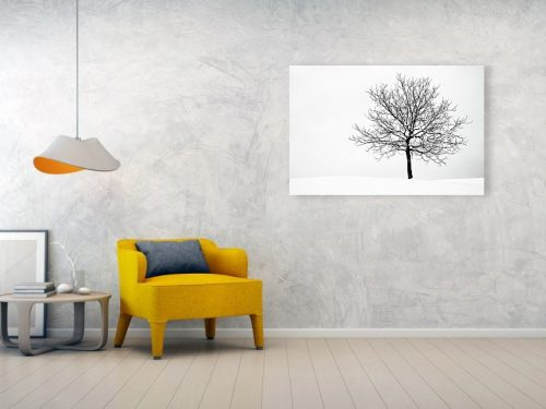 Acrylic print example of tree in winter